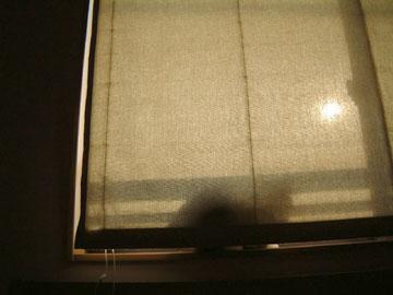 シェードカーテンと窓の間に無理やり収まるハナ
