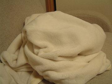 ちょっとボリュームのある白毛布のかたまり