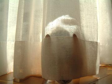 カーテンの下から外に出ようとするハナ
